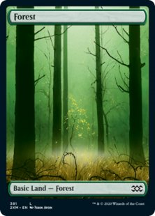 Forest (1) (foil) (full art)