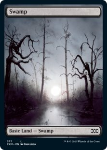 Swamp (1) (foil) (full art)