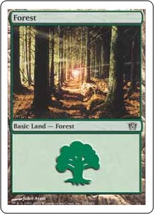 Forest (1)