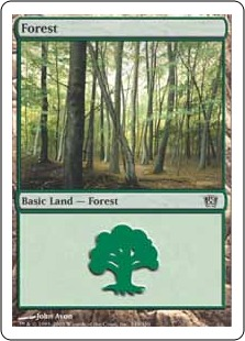 Forest (2)