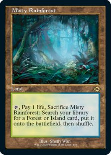 Misty Rainforest (retro frame) (showcase)