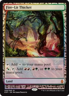 Fire-Lit Thicket (foil) (full art)