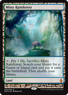 Misty Rainforest (foil) (full art)