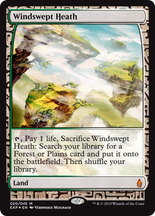 Windswept Heath (foil) (full art)