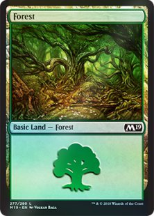 Forest (5) (foil)