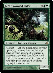 Leaf-Crowned Elder