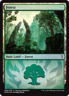 Forest (7) (foil) (Gruul)