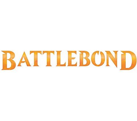 Basic Land Pack: Battlebond (50 cards)
